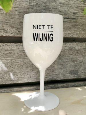 Kunststof Wijnglas Wijnig